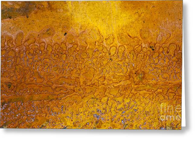 Rust Greeting Card by Tim Gainey