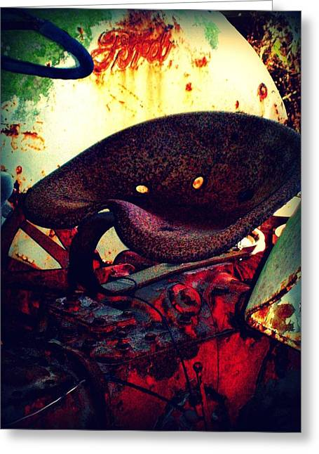 Pierce County Greeting Cards - Rusted Seat Greeting Card by Dana  Oliver