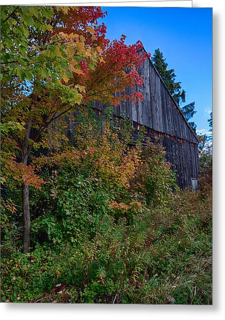Rustic Barn Above The Fall Colors Greeting Card by Jeff Folger