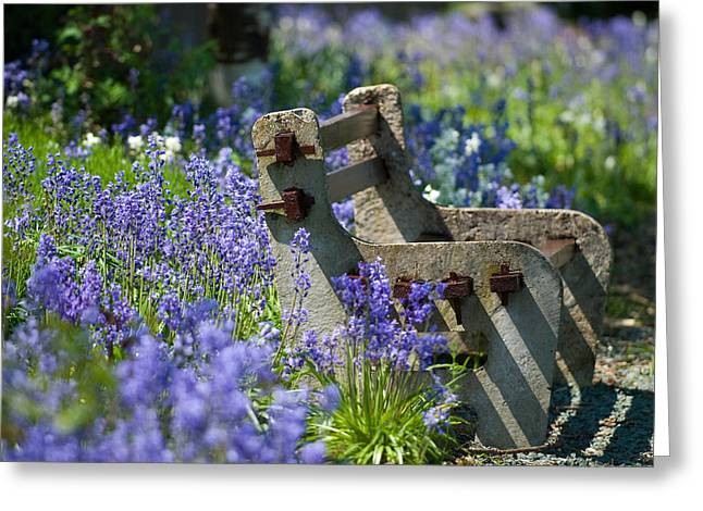 Rustic Photo Greeting Cards - Rustic Bench Greeting Card by Amanda And Christopher Elwell