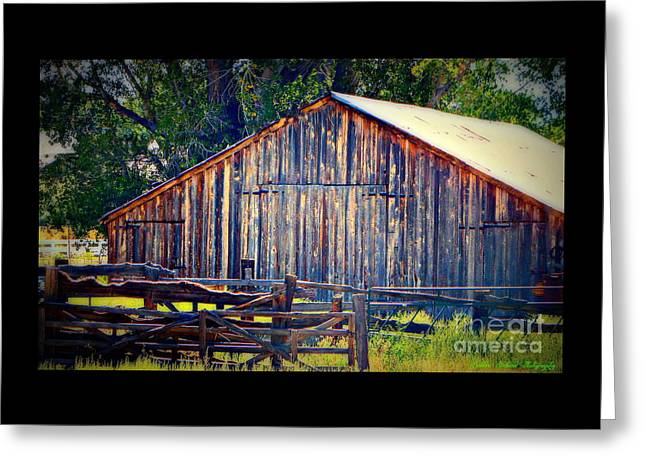 Old Barns Greeting Cards - Rustic Vintage Barn in Color Greeting Card by Bobbee Rickard