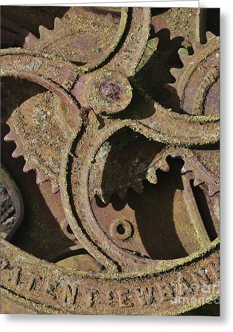 Industrial Background Greeting Cards - Rusty Cogs Greeting Card by Terri  Waters
