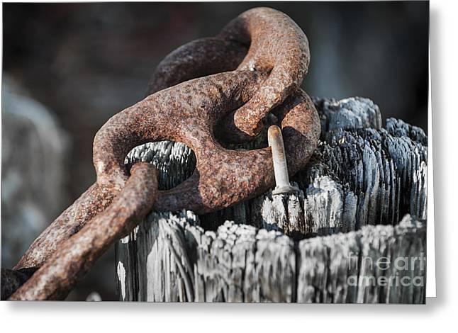 Rusty Iron Chain Railing Fragment Greeting Card by Elena Elisseeva