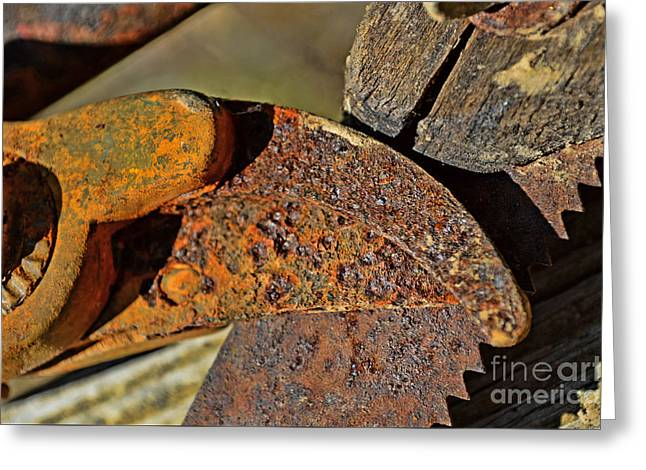 Saw Greeting Cards - Rusty Tools 3  Greeting Card by Debbie Portwood
