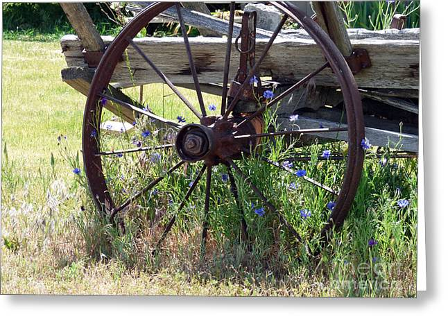 Wagon Pastels Greeting Cards - Rusty Wheel and Flowers Greeting Card by Shandel Gamer