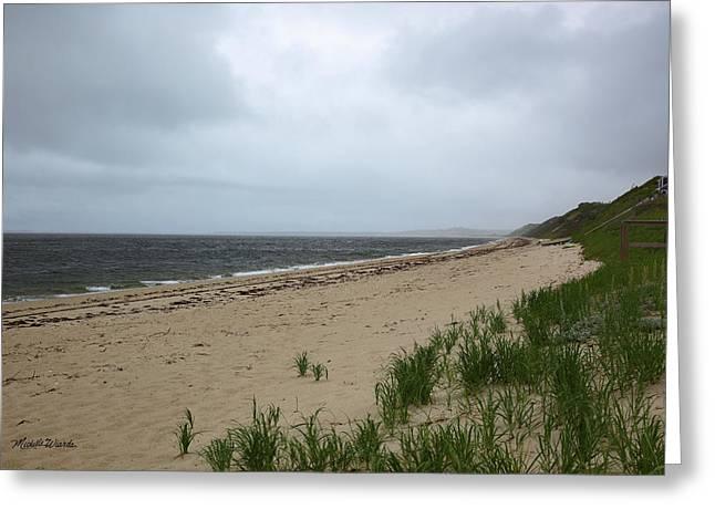 Ryder Beach Truro Cape Cod Massachusetts Greeting Card by Michelle Wiarda