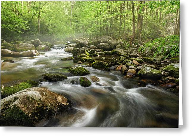 S Curve In The Smokies Greeting Card by Jon Glaser