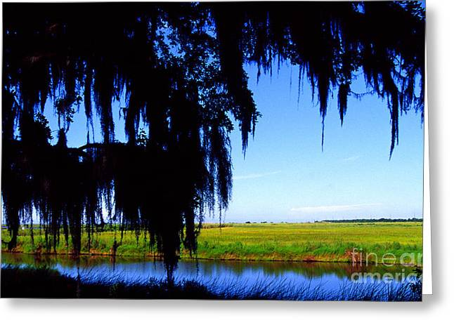 Sabine National Wildlife Refuge Greeting Card by Thomas R Fletcher