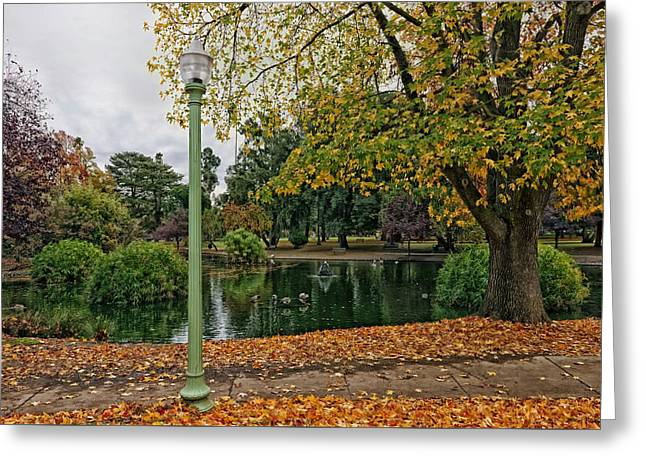 Lovely Pond Greeting Cards - Sacramento Autumn Park Greeting Card by Mountain Dreams