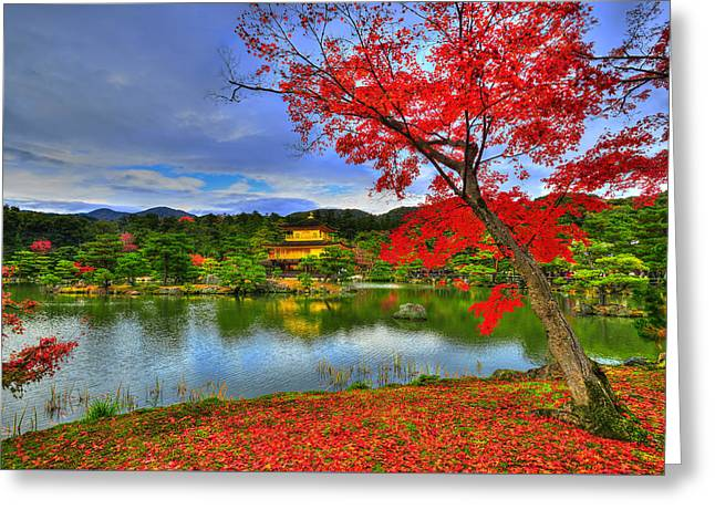 Red Leaves Greeting Cards - Sacred Autumn Greeting Card by Midori Chan