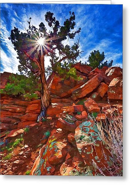 Colorful Cloud Formations Greeting Cards - Sacred Ground - Shamans Dome Juniper Greeting Card by Bill Caldwell -        ABeautifulSky Photography