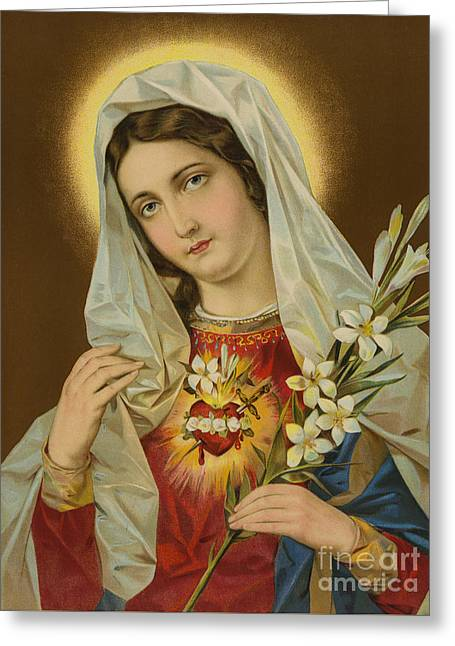 Sacred Heart Of The Virgin Mary Greeting Card by European School