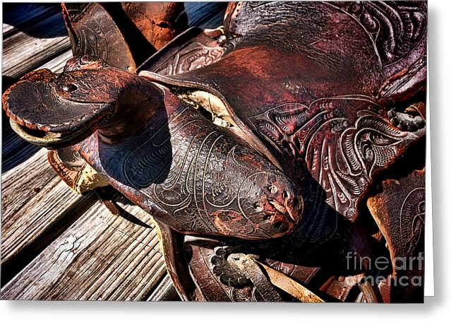 Horns Greeting Cards - Saddle of Broken Dreams  Greeting Card by Olivier Le Queinec