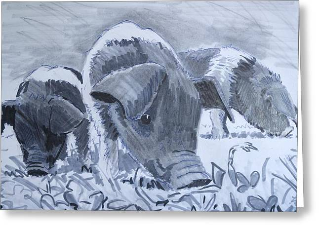 Piglets Mixed Media Greeting Cards - Saddleback piglets Greeting Card by Mike Jory