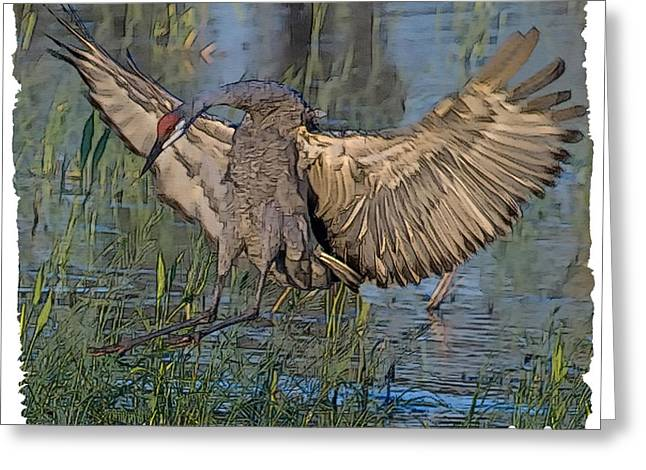 Sandhill Cranes Greeting Cards - Safe Landing Greeting Card by Larry Linton