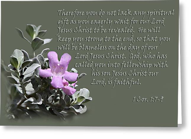 Scripture Verse Greeting Cards - Sage Blossom 1Cor.1 vs 7 to 9 Greeting Card by Linda Phelps