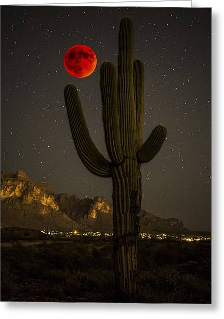 Saguaro And The Super Bloodmoon Greeting Card by Chuck Brown