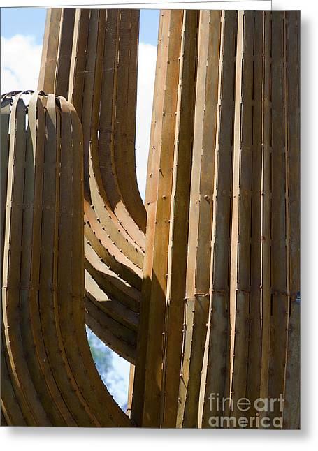 Hightower Greeting Cards - Saguaro Cactus in Steel Greeting Card by Tim Hightower