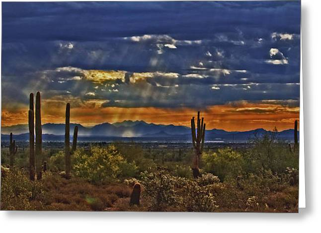 Saguaro Dawn Greeting Card by Kenneth Roberts