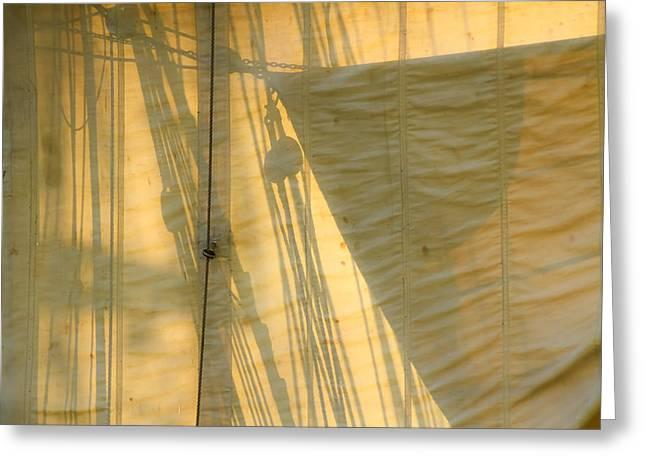 Tall Ship Greeting Cards - Sail And Shadows Greeting Card by Sven Brogren