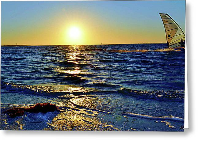 SAIL AWAY Greeting Card by TAMMY  SHIVER