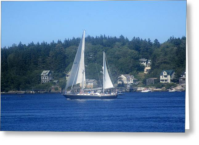 Ocean Sailing Greeting Cards - Sail Boat Greeting Card by Sharyn Atwater