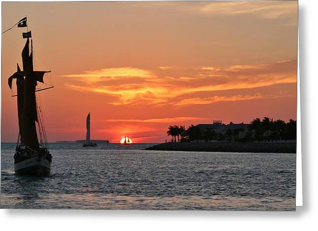 Djphoto Greeting Cards - Sail To The Sun Greeting Card by DJ Florek