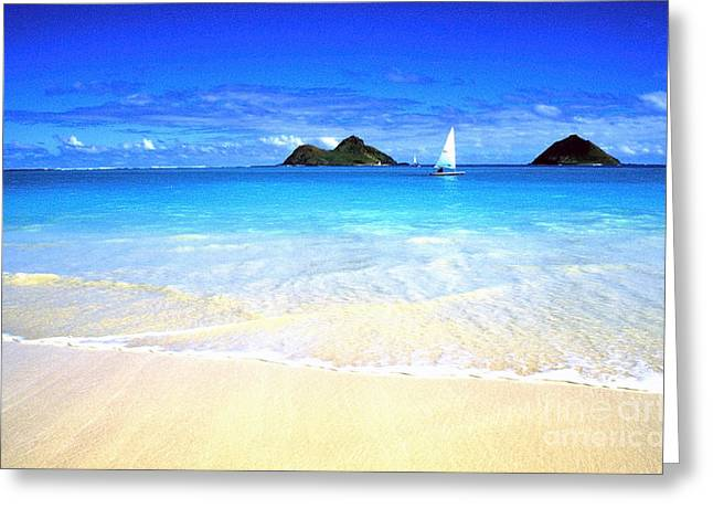 Blue Sailboats Greeting Cards - Sailboat and Islands Greeting Card by Thomas R Fletcher