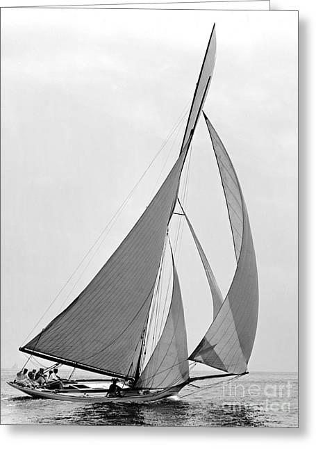 Padre Art Greeting Cards - Sailboat Hawk 1891 Greeting Card by Padre Art