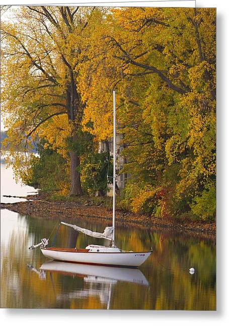Fall Trees Greeting Cards - Sailboat in Alburg Vermont  Greeting Card by George Robinson