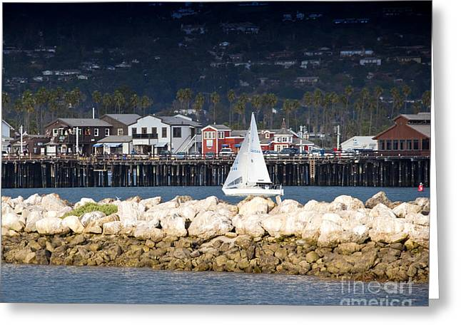 Leisure Time Greeting Cards - Sailboat in Harbor Greeting Card by David Buffington