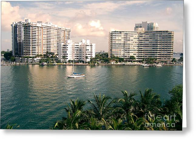 Greeting Cards - Sailboat In Miami Beach Florida Greeting Card by Phil Perkins