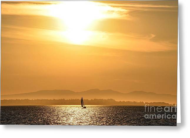 Sailboat Ocean Greeting Cards - Crescent Beach Sailboat Summer Sunset Greeting Card by Turtle Shoaf