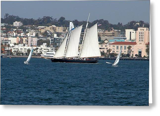 Sailboat Greeting Cards - Sailboats 3 Greeting Card by Joseph R Luciano