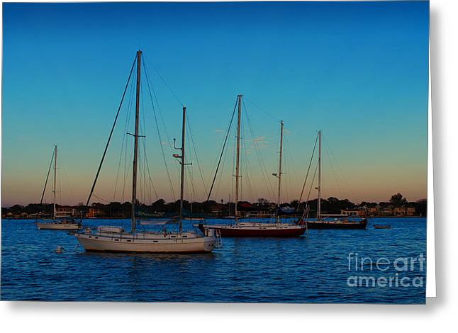 Sailboats In Harbor Greeting Cards - Sailboats Greeting Card by Julian Gandolfo