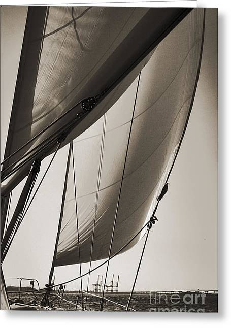 Sepia Digital Art Greeting Cards - Sailing Beneteau 49 Sloop Greeting Card by Dustin K Ryan