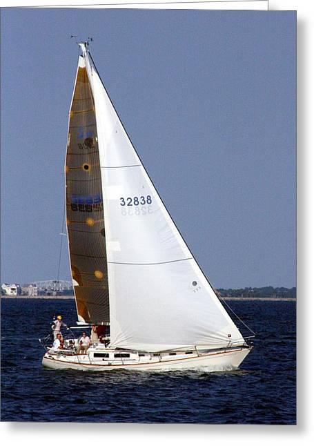 Blalock Greeting Cards - Sailing Greeting Card by Dana  Oliver