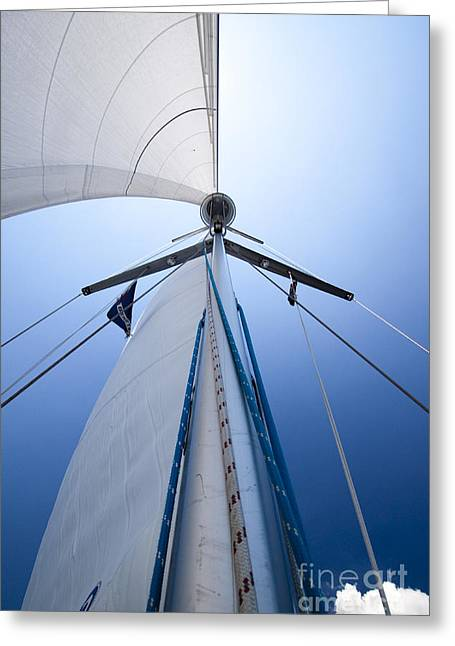 Cruising Photographs Greeting Cards - Sailing Greeting Card by Dustin K Ryan