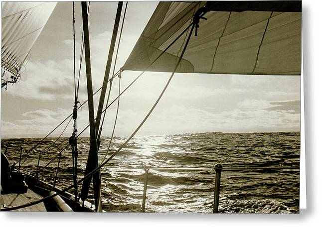 Frank Ocean Art Greeting Cards - Sailing Greeting Card by Frank DiMarco