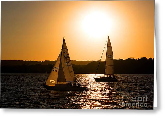 Water Vessels Greeting Cards - Sailing Home At Twilight Greeting Card by Barbara McMahon