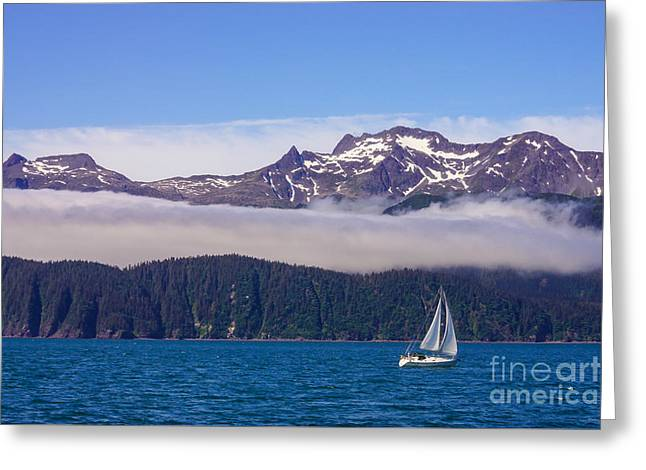 Sailboat Images Greeting Cards - Sailing in Alaska Greeting Card by Jennifer White