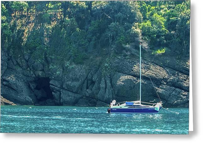Sailing In Portofino Greeting Card by Al Hurley