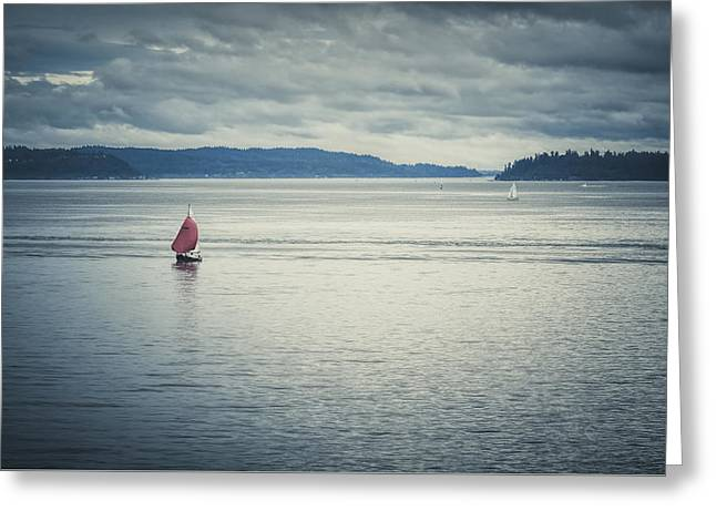 Bainbridge Island Greeting Cards - Sailing In Puget Sound  Greeting Card by Sharon Norman
