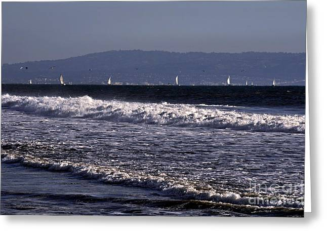 Bruster Greeting Cards - Sailing In Santa Monica Greeting Card by Clayton Bruster