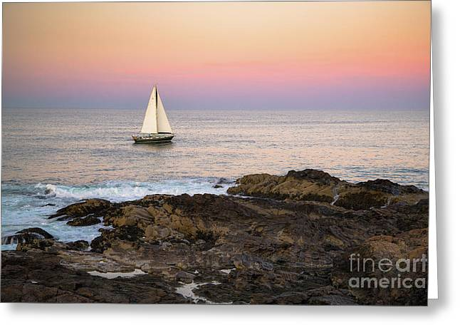 Sailing Off Marginal Way Ogunquit Greeting Card by Benjamin Williamson