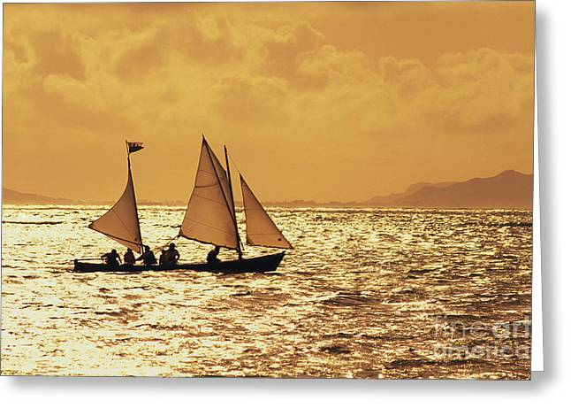 Sailboat Art Greeting Cards - Sailing On Golden Water Greeting Card by Dana Edmunds - Printscapes