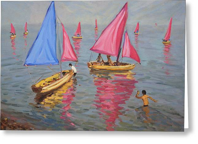 Boats In Harbor Greeting Cards - Sailing school Greeting Card by Andrew Macara
