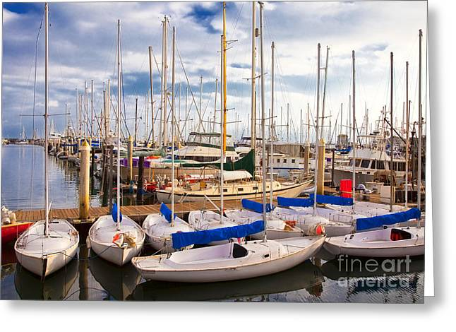 Leisure Time Greeting Cards - Sailoats Docked in Marina Greeting Card by David Buffington