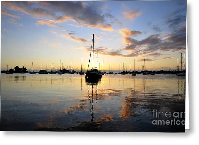Sailing Boat Greeting Cards - Sailors delight Greeting Card by David Lee Thompson