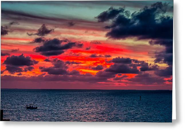 Sailors Delight Greeting Card by John M Bailey